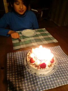 """""""ココアスポンジのショートケーキで*゜。*"""""""