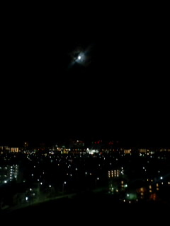 """""""東京の夜*。゜。*"""""""