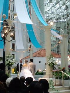 """""""気の置けない仲間〜素敵な結婚式*。゜。"""""""